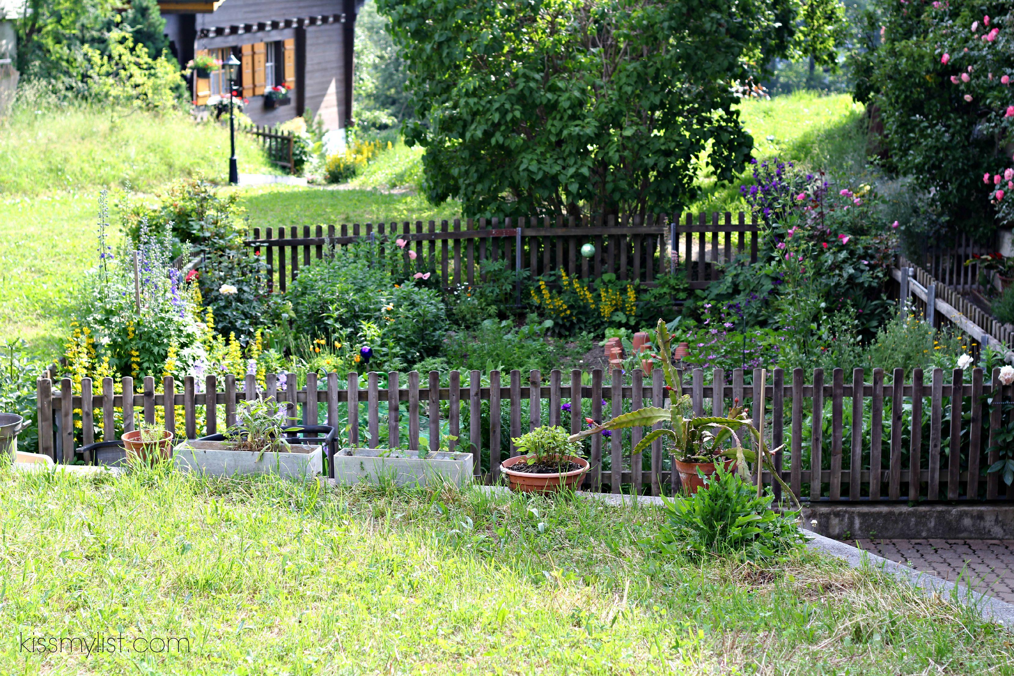 Garden in Wengen Switzerland