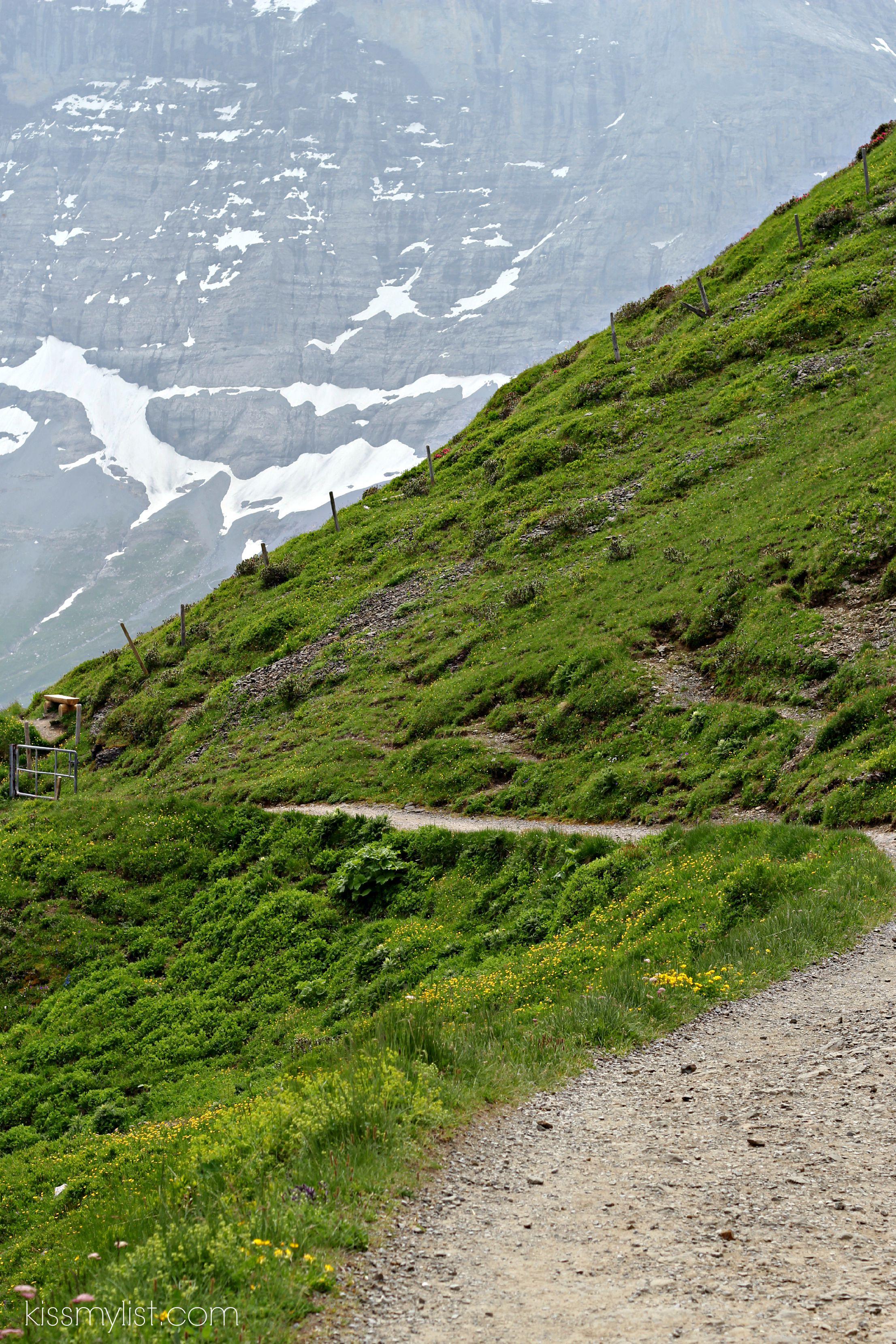 Hike to Kleine Scheidegg