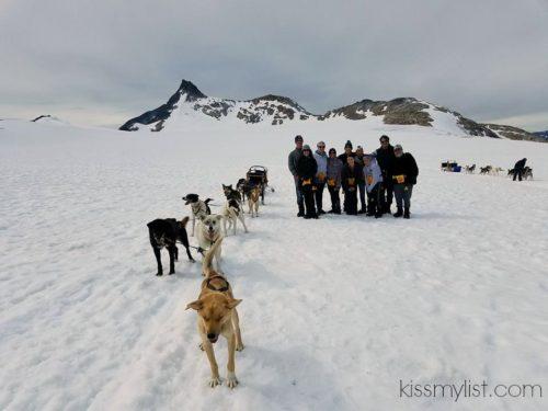 Denver Dog Kennels Norfolk