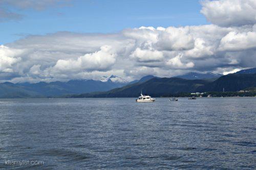 Alaska Orca Tour